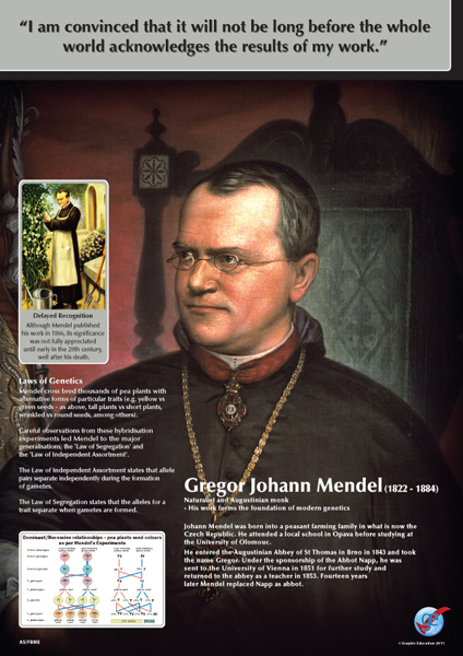 famous biologist gregor mendel Gregor mendel was an austrian monk who discovered the basic famous people named gregor famous people born botanists and biologists conducting.